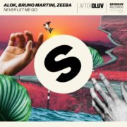 alok bruno martini feat zeeba never let me go